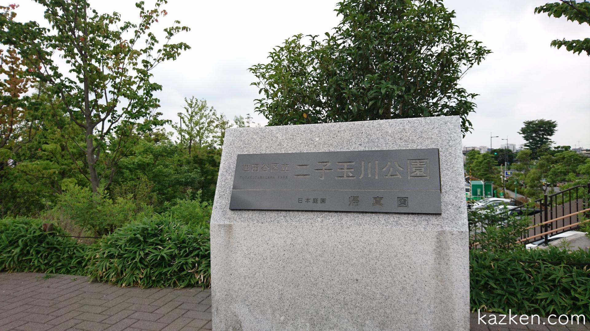二子玉川公園でピクニックするときのおすすめポイント5選
