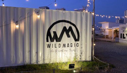 豊洲のワイルドマジック(WILD MAGIC)に行った感想【予約方法や会場内の様子をまとめました】